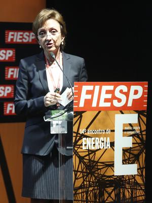 Elizabeth: é preciso otimizar os investimentos. Foto: Everton Amaro/Fiesp