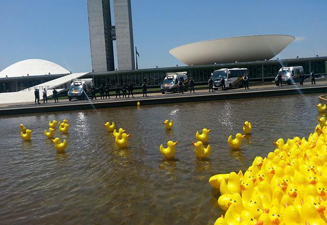 Patinhos flutuam no espelho d'água do Congresso. Foto: Ayrton Vignola/Fiesp